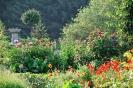 Garten_15